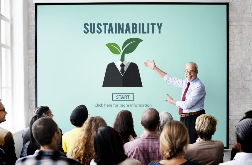 Sustainability Is the Name of the Game in the Business Sector