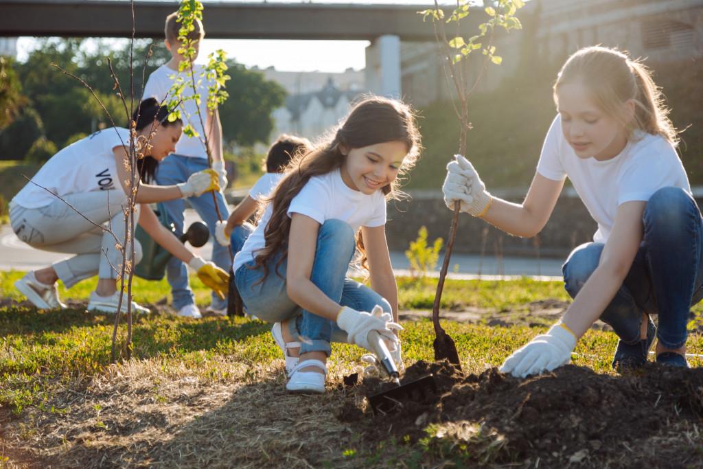 community tree planting drive